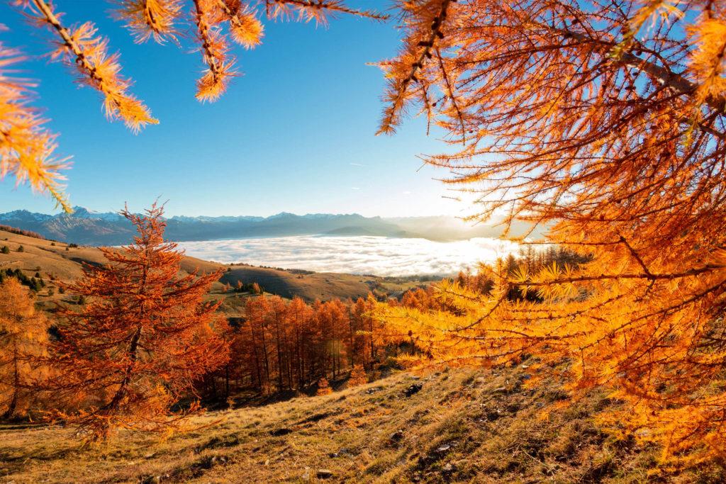 Photographie d'illustration d'un paysage en montagne